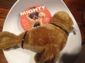 Mighty Toy Rethinking Durability